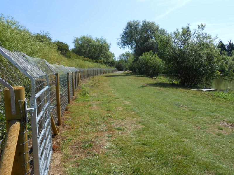 AIF Completed fence 1 800