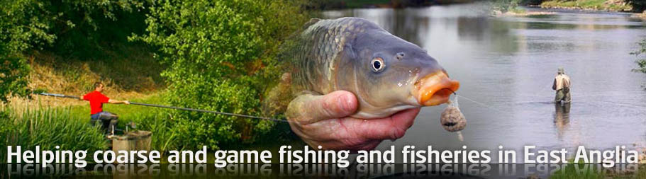 fishery forum header 2